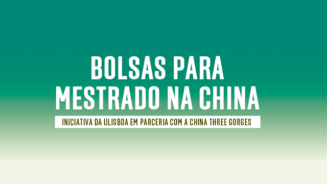 bolsas china noticia gd 1 640x360