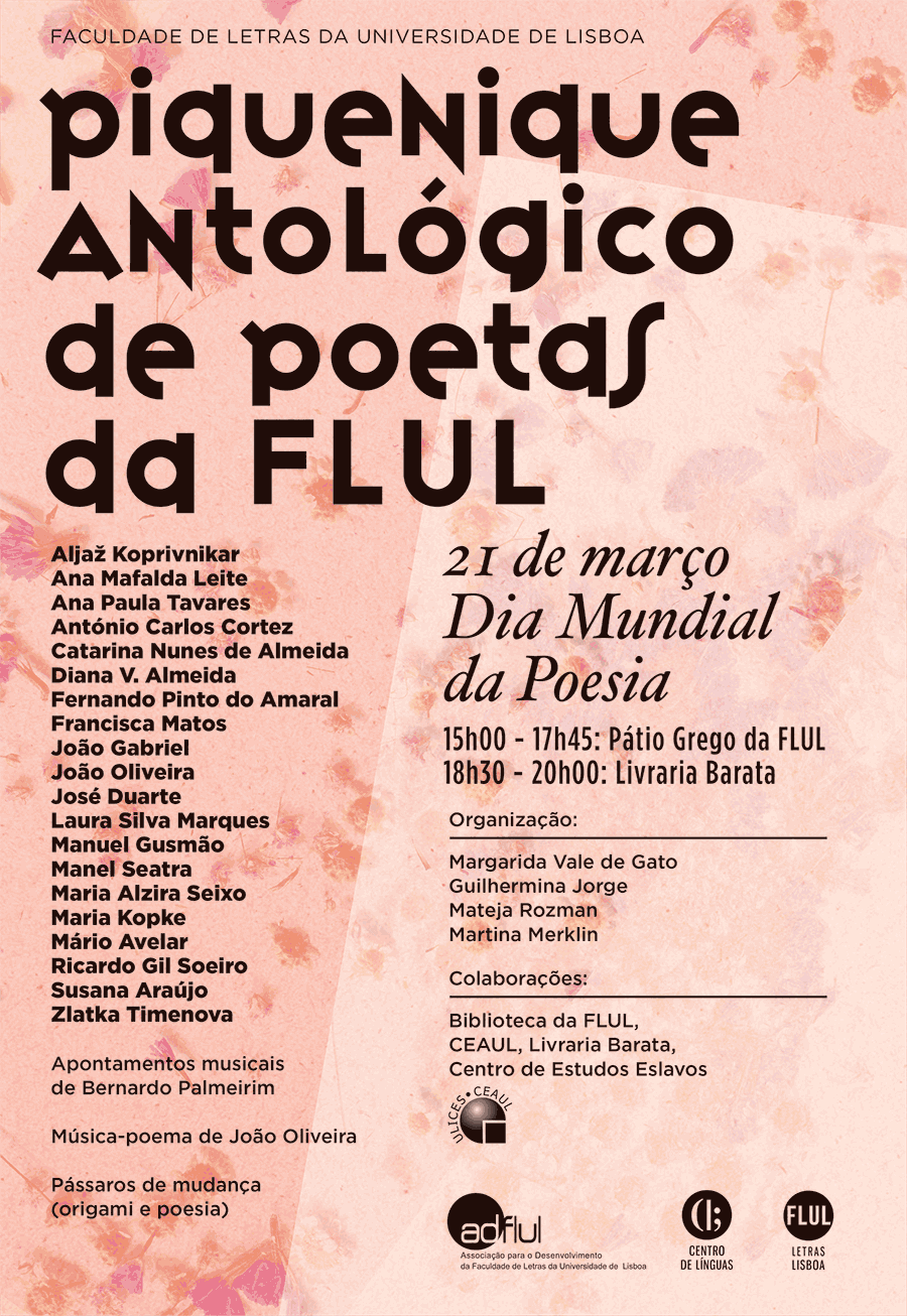 cartaz piquenique poetas